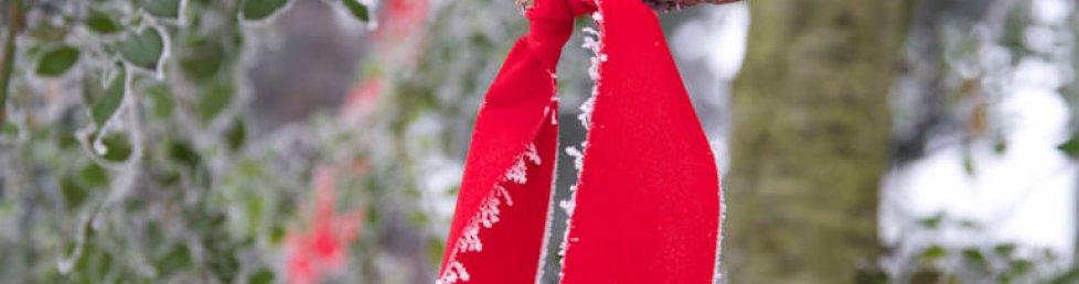 Fotografie - Nature Schleife mit Frost
